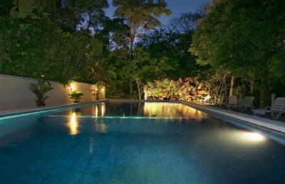 Huge Pool set in the Jungle