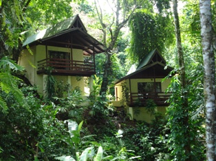 Private Jungle Bungalows!