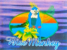The Blue Monkey, Manuel Antonio, Costa Rica